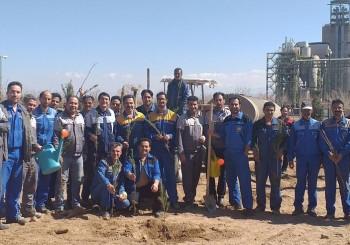 برگزاری آیین درختکاری در کارخانه سیمان سبزوار